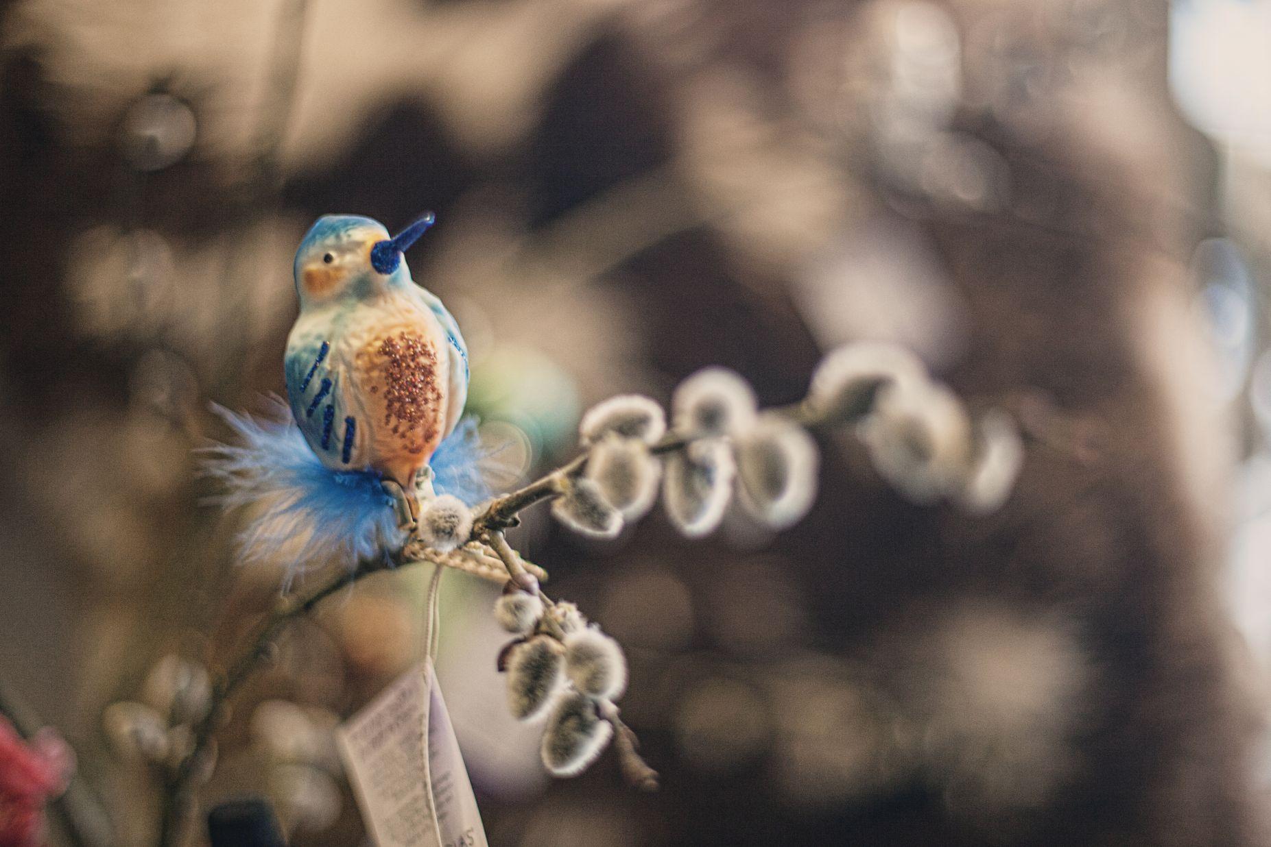 Vogeldeko bei Ege